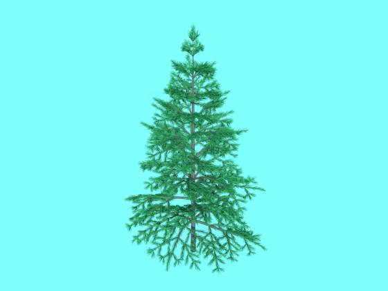 Tree N060709