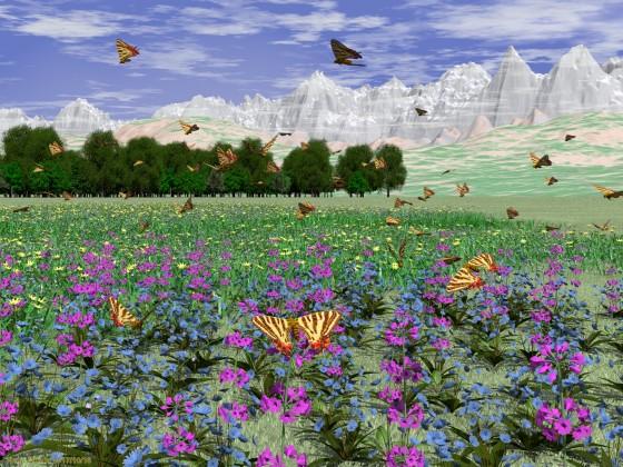 蝶の乱舞する花畑