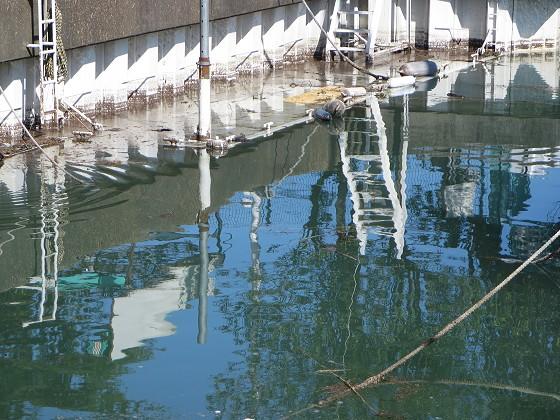 2017-10-27_1209_掘割内の桟橋が水没_IMG_2232_s.JPG