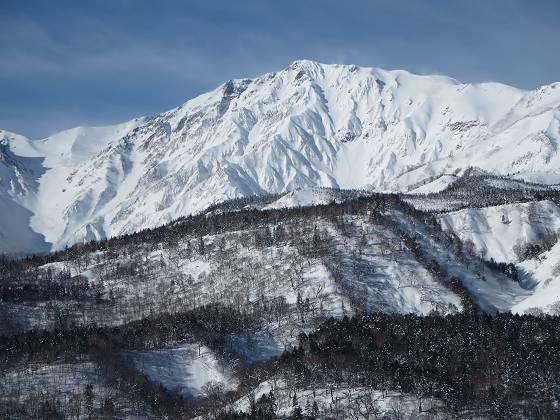 2018-01-16_1001_栂の森ゲレンデ最上部から見た白馬岳_IMG_3934_s.JPG