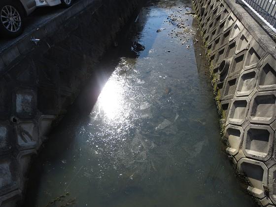 2018-02-07_1107_川の氷_IMG_4155_s.JPG