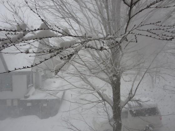 2018-02-17_1458_窓の外雪_IMG_4386_s.JPG