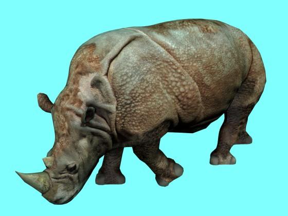 Rhino Rig & Animated