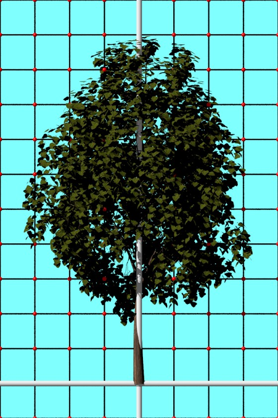 Tree1_by_Medievalworlds_TurboSquid_e2_POV_scene_w560h840q10.jpg