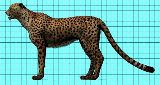 African_Leopard_CadNav_e2_POV_scene_w560h299q10.png