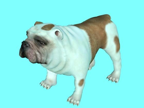 Bulldog Pug