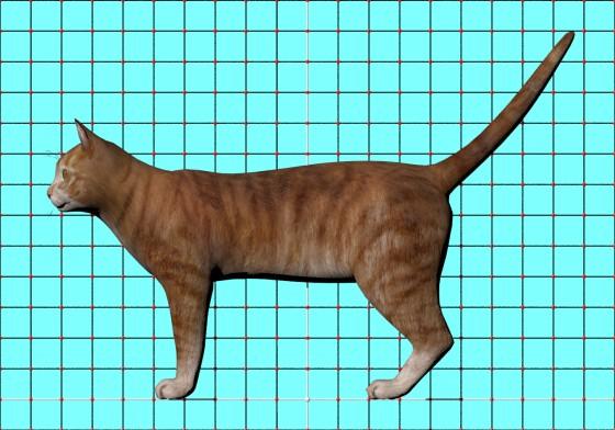 Cat_by_3dregenerator_Free3D_e3_POV_scene_w560h392q10.jpg