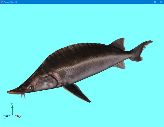 preview_Atlantic_Sturgeon_CadNav_fbx_obj_last_s.jpg