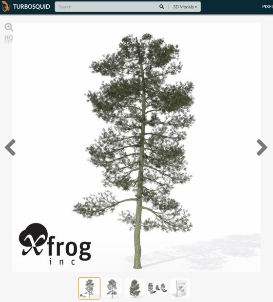 TurboSquid_XfrogPlants_Bishop_Pine_ts.jpg