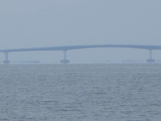 2018-06-22_1121_琵琶湖大橋の橋脚基部が水面上に浮かんで見える_IMG_1236_ts.JPG