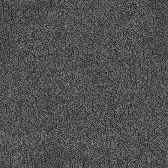 photo_photo_high_resolution_seamless_leather_t_by_environment_textures-d7boo70.jpg
