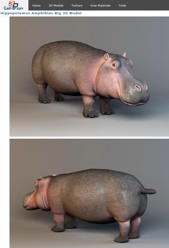 CadNav_Hippopotamus_Amphibius_Rig_ts.jpg