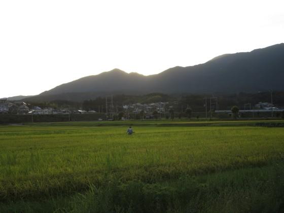 2018-08-18_1808_和邇駅へ向かう・日が落ちた_IMG_1648_s.JPG