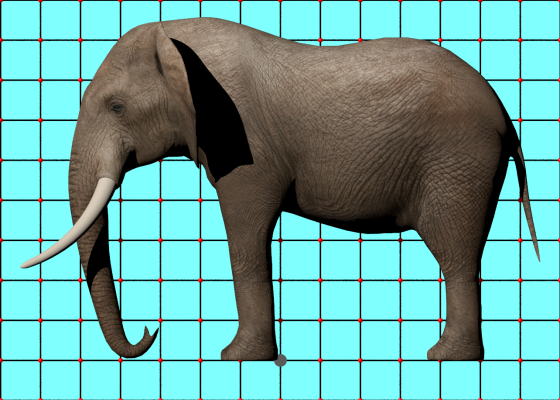 Elephant_by_ergin3d_TurboSquid_e1_POV_scene_w560h400q10.png