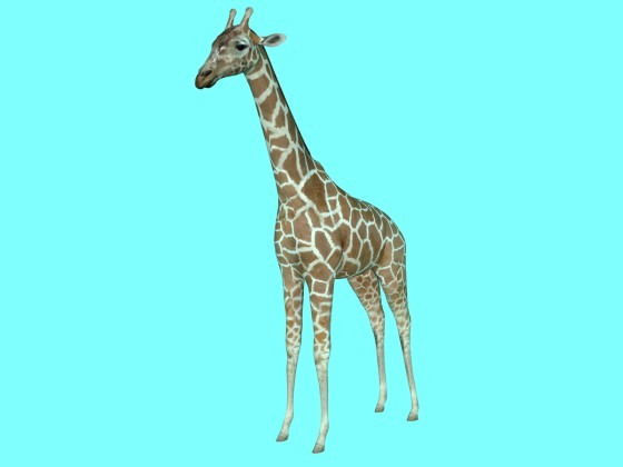 giraffe 3D by ergin3d