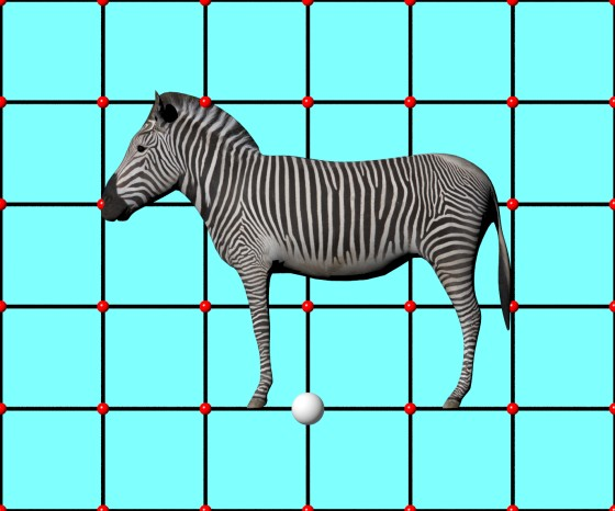 Zebra_by_ergin3d_TurboSquid_e1_POV_scene_w560h466q10.jpg