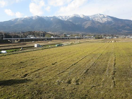 2019-01-19_1448_農道から見た雪の比良の山並み_IMG_2941_s.JPG