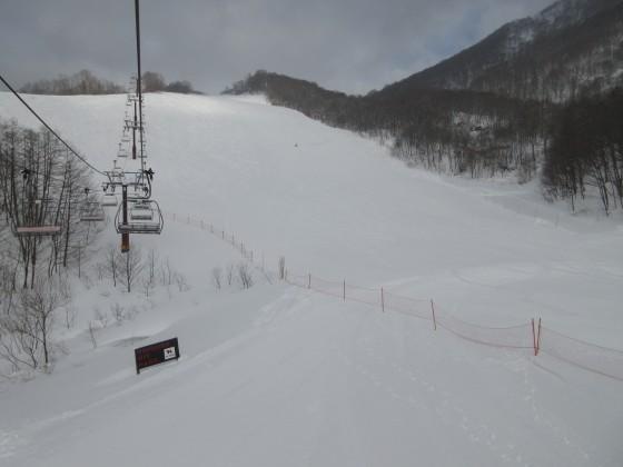 2019-01-25_0848_ハンの木コース中間急斜面_IMG_6752_s.JPG