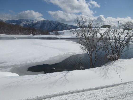 2019-01-25_1151_レストエデンから見た遊水地_IMG_6761_s.JPG
