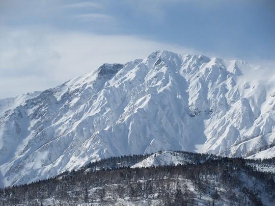 2019-01-25_1254_栂の森ゲレンデ最上部から白馬岳_IMG_6775_s.JPG