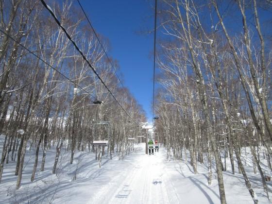 2019-01-27_0953_ハンの木高速ペアリフトから見た青空_IMG_6820_s.JPG