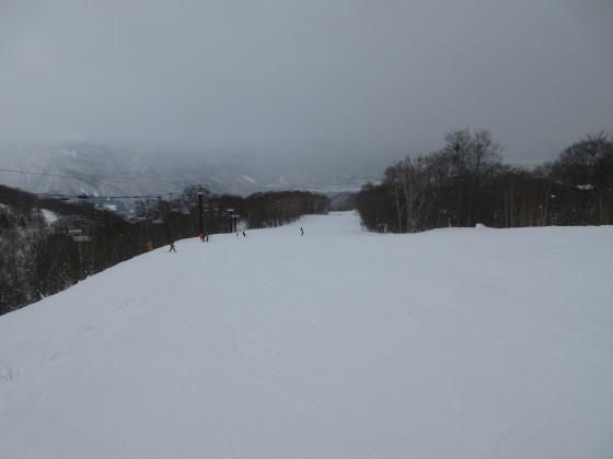2019-01-28_1106_ハンの木コース最上部_IMG_6852_s.JPG