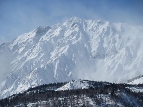 2019-02-01_1229_栂の森ゲレンデ最上部から見た白馬岳_IMG_7107_s.JPG