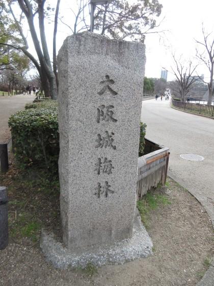 2019-02-12_1232_大阪城梅林_IMG_7190_s.JPG