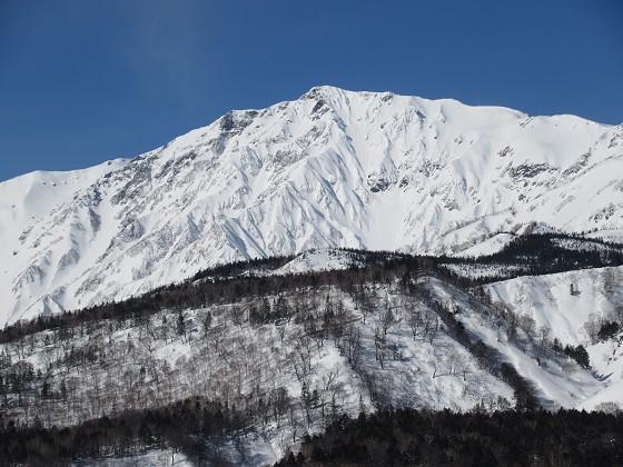 2019-02-22_0938_栂の森ゲレンデ最上部から見た白馬岳_IMG_7325_s.JPG