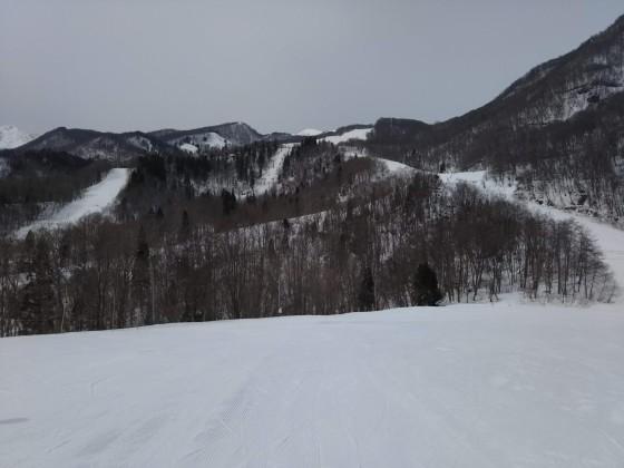 2019-02-27_1127_丸山ゲレンデ最上部から見たハンの木コース・沢コース・尾根コース_DSC_0132_s.JPG