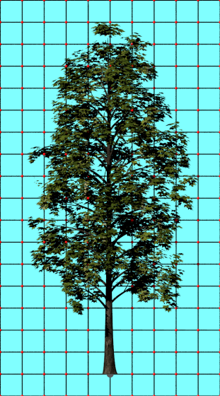 Maple_Platanoides_Think_N160219_3ds_e1_POV_scene_w311h560q10.png