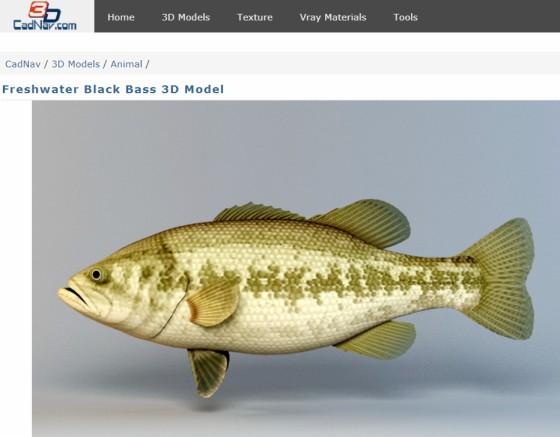 CadNav_Freshwater_Black_Bass_ts.jpg