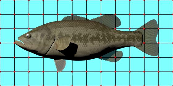 Freshwater_Black_Bass_e1_POV_scene_w560h280q10.png