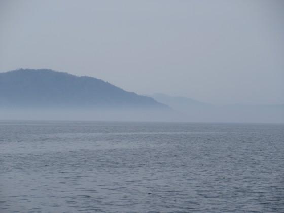 2019-04-18_1412_湖東の湖岸は靄の中_IMG_8128_s.JPG