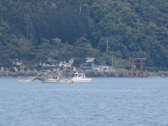 2019-06-01_1403_後方に鮎漁船と白髭神社の鳥居_IMG_8784_ts.JPG