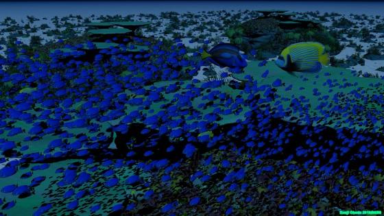 サンゴ礁と魚(3)