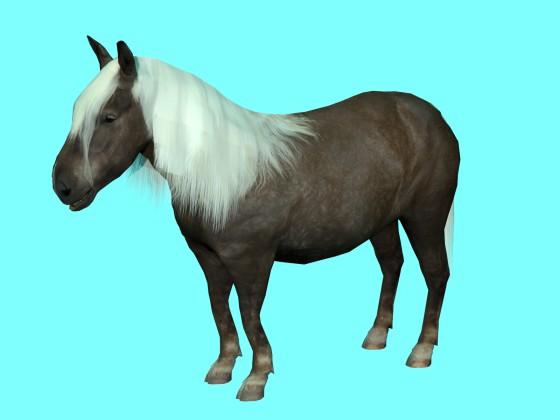 Animated Shetland Pony