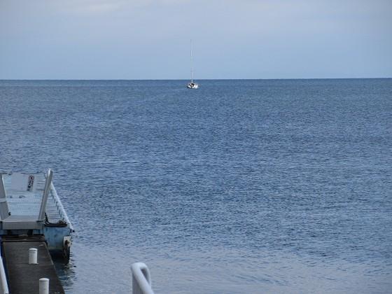 2020-01-02_1036_一番に出港した社長のクルーザー・ビワマス釣り_IMG_1613_s.JPG