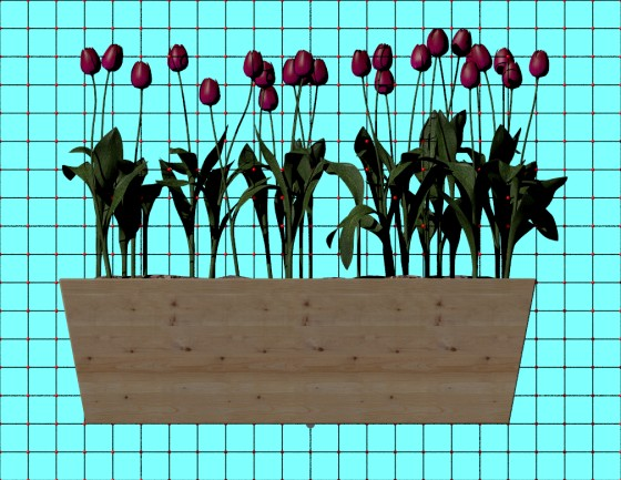 Flowers_box_N231219_Tulips_e2_POV_scene_w560h433q10.jpg