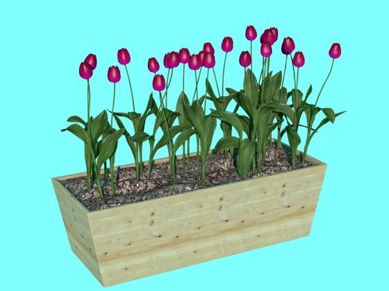 Flowers box N231219