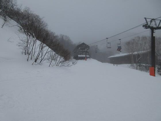 2020-01-23_1443_雨のハンノキ最上部_IMG_1837_s.JPG