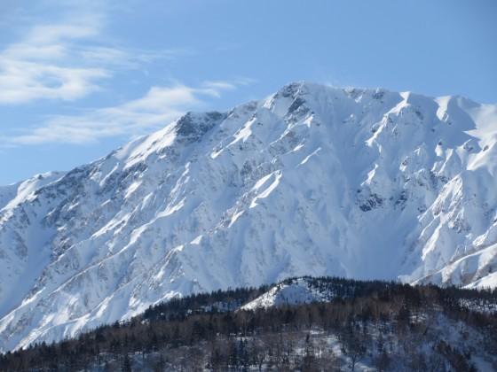 2020-01-26_1356_栂の森ゲレンデ最上部から白馬岳_IMG_1994_s.JPG
