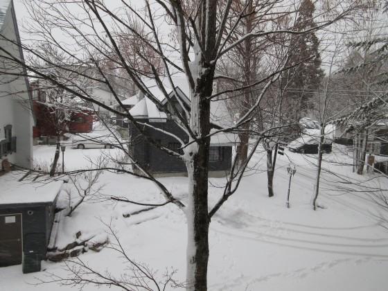 2020-01-28_0754_窓の外の雪の様子_IMG_2044_s.JPG