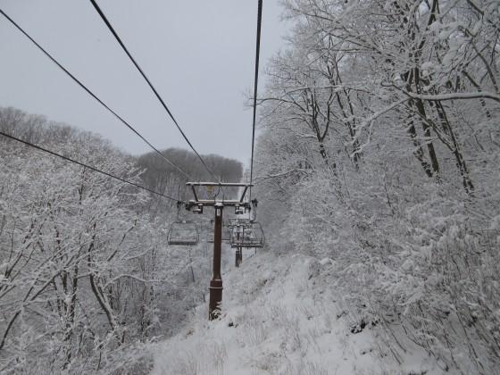 2020-02-01_0827_白樺クワッドリフトから見た白くなった木々_IMG_2185_s.JPG