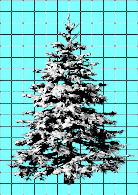 Snowy_Pine_e2_POV_scene_w560h793_scaled.jpg