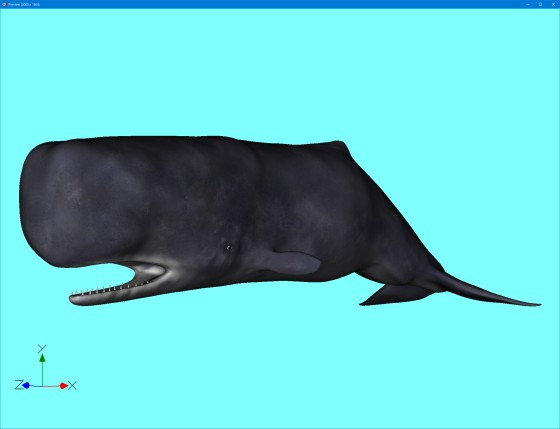 preview_Animated_Sperm_whale_Rig_fbx_obj_last_s.jpg