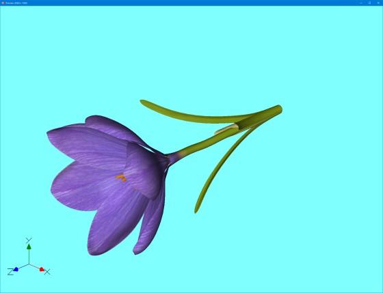 preview_Crocus_Flower_V1_obj_1st_s.jpg