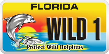 Florida_1392594.jpg