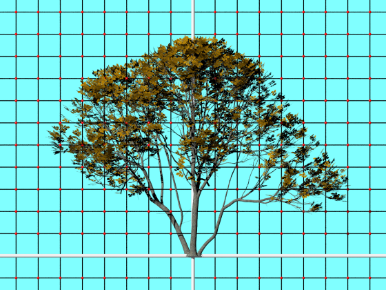Oak_tree_2_TurboSquid_e1_POV_scene_Scaled_w560h420q10.png