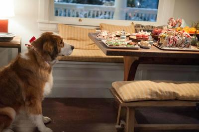 クーパー家の晩餐